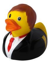 Squeaky Duck Groom